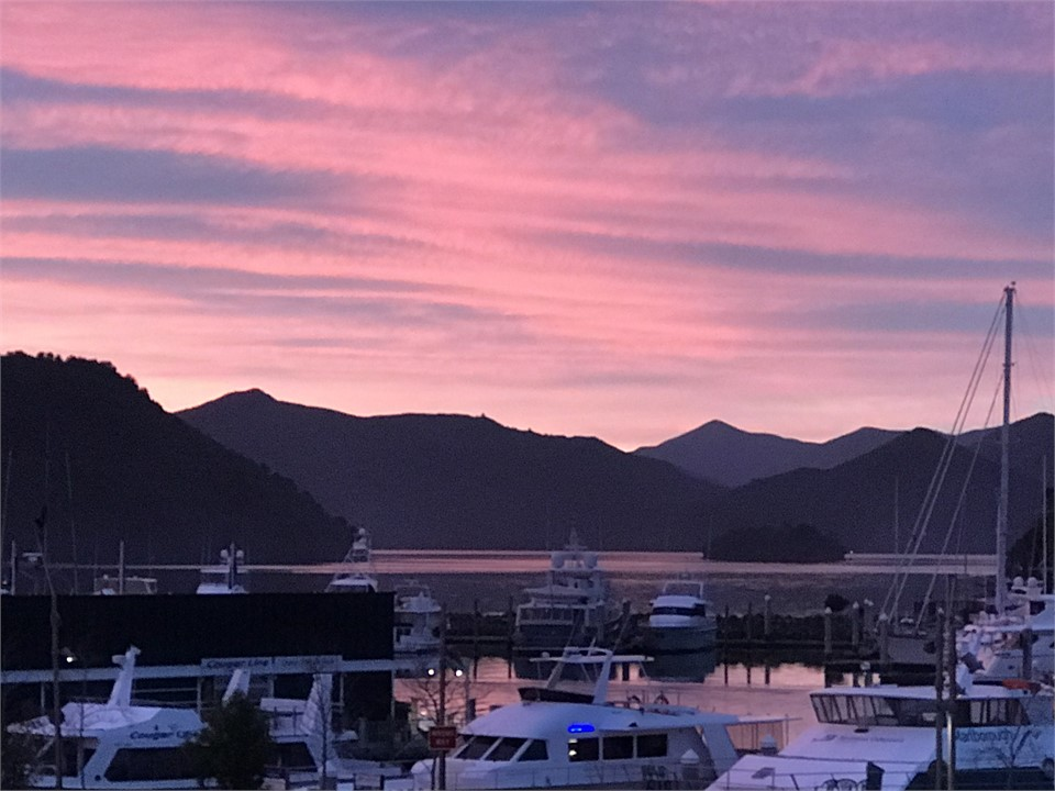 We offer 20 waterfront apartments ranging from 1 to 3 4bedroom they all have stunning views of queen charlotte sound and minutes from all tourist activites