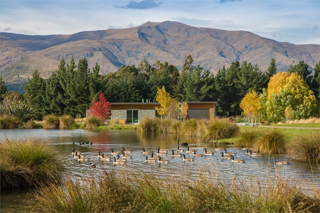 Omaio Is A Beautiful Home Offering Guests Peace And Tranquility Amongst  Private Wetlands, Wandering Wild Pukekos And All Day Sunshine, All Just A  20 Minute ...