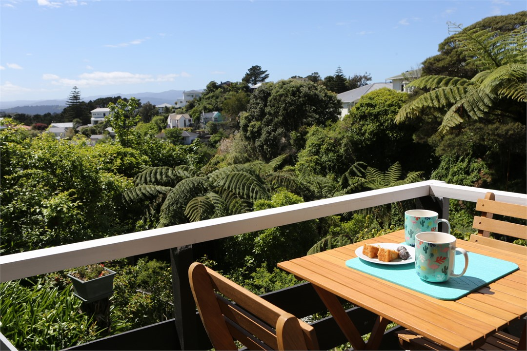 Short term rentals wellington